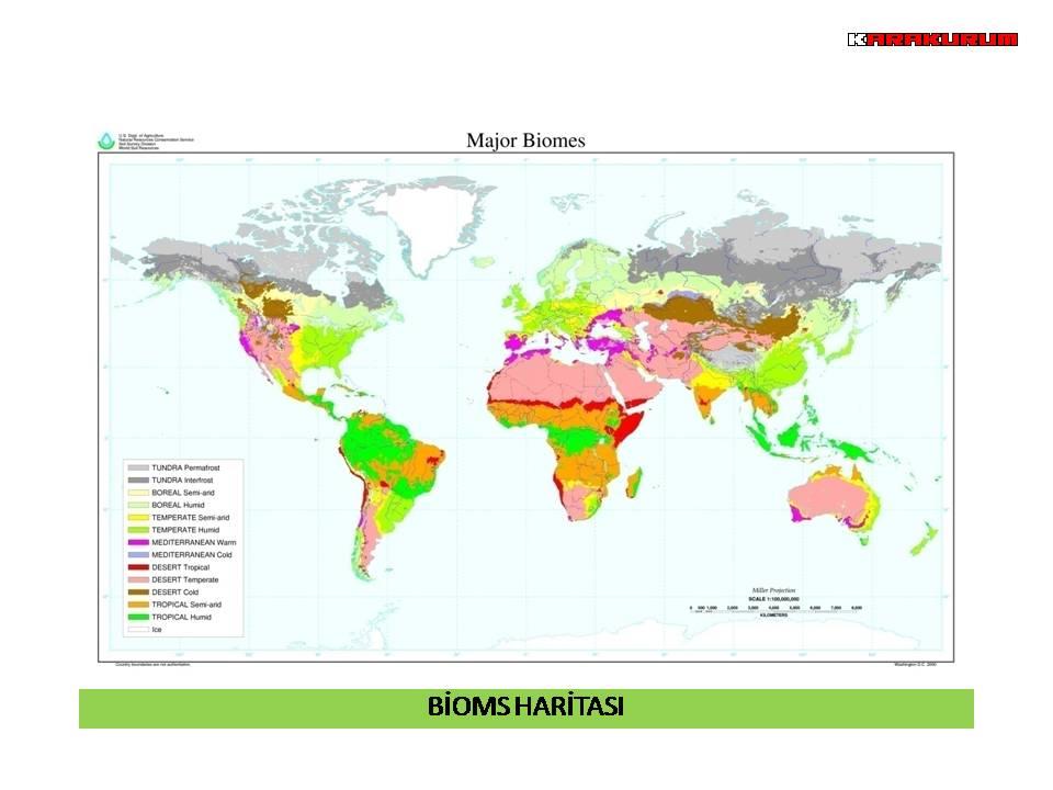 a short description of the major ecosystem chaparral